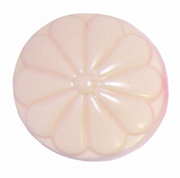 Flüssigfarbe Sapolina opak apricot