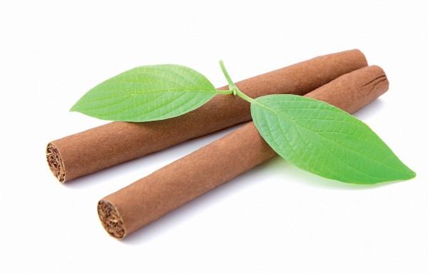 Duft Tabak
