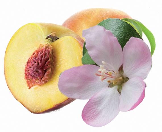 Duft Pfirsichblüte